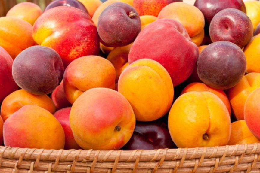 Τροφές για αντηλιακή προστασία το καλοκαίρι