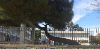 Σχολείο Φωτογράφος:Μαρία Νικολάου
